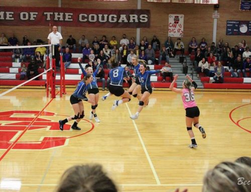 Volleyball Team Plays in District Final