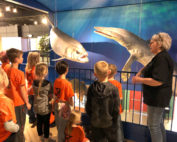 first graders learning about ancient sea creatures
